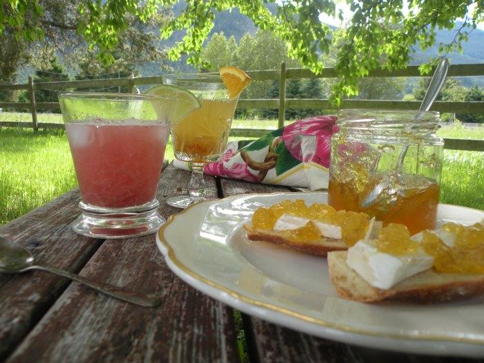 Rhubarb Cooler and Orange Vanilla Dream Cocktail