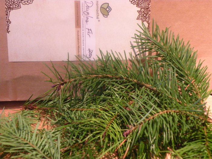 Douglas Fir Tips Le Meadow's Pantry