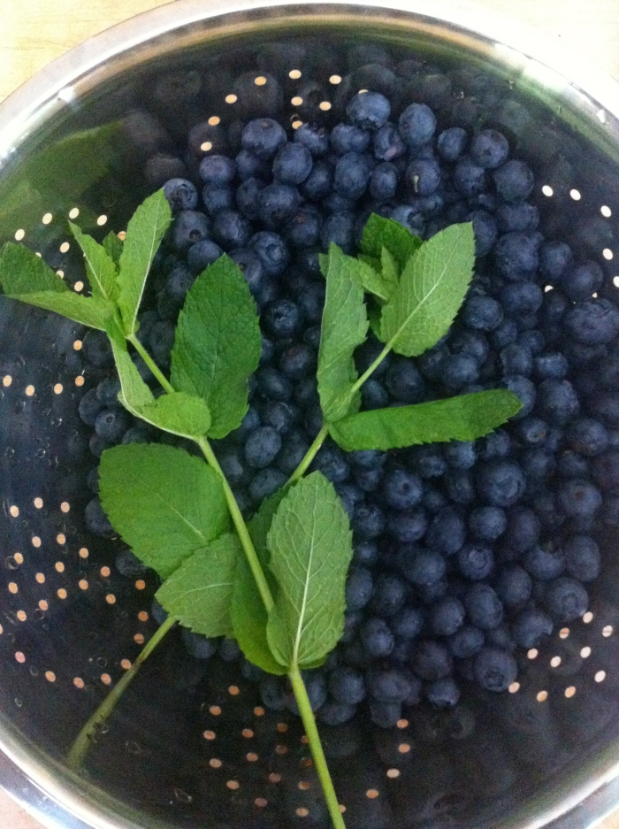 BC Blueberries, Fresh Mint and Lemon Balm